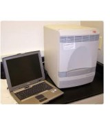 ABI 7300 Real-Time PCR
