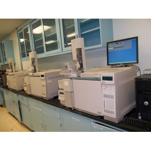 Agilent 5973N MSD with 6890 Plus GC