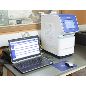 ABI StepOne Plus Real-time PCR System
